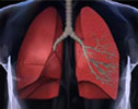 tt_respiratoryInfection